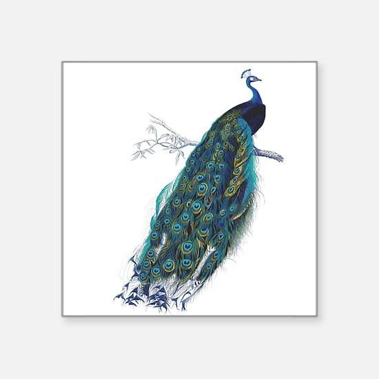 Vintage peacock Sticker