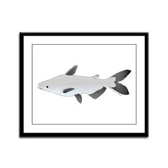 Mekong Giant Catfish Framed Panel Print