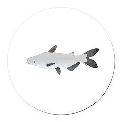 Mekong Giant Catfish Round Car Magnet
