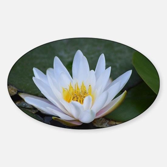 White Lotus Flower Sticker (Oval)