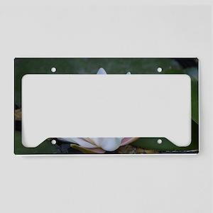 White Lotus Flower License Plate Holder