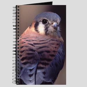 kestrel, falcon Journal
