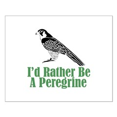 Rather Be A Peregrine Posters