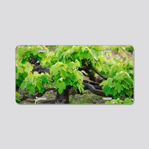 Grape vines Aluminum License Plate