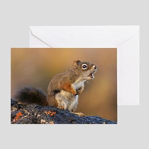 Singing Squirrel Greeting Card
