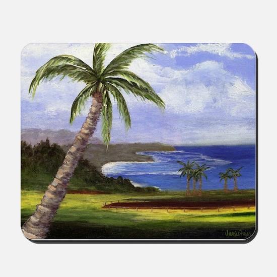 Beautiful Kauai Mousepad