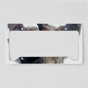 Sloth License Plate Holder