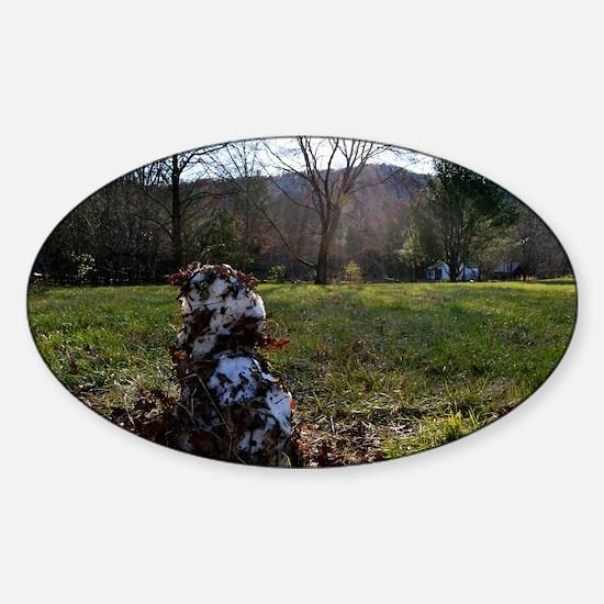 Great Smoky Mountains Calendar Sticker (Oval)