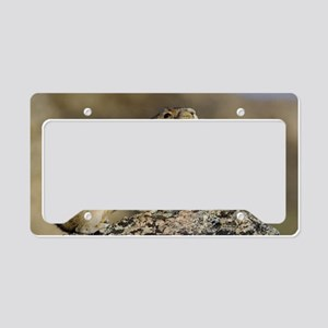 Hitting the High Note! License Plate Holder