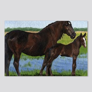 Percheron Mare And Foal D Postcards (Package of 8)