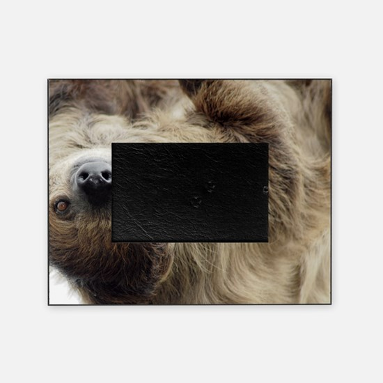 Sloth Picture Frame