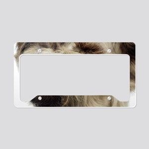 Sloth License Plate Holder