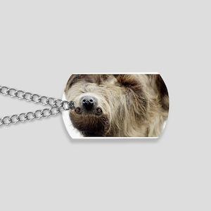 Sloth Dog Tags