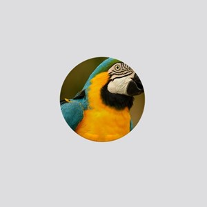 blue and gold macaw Mini Button