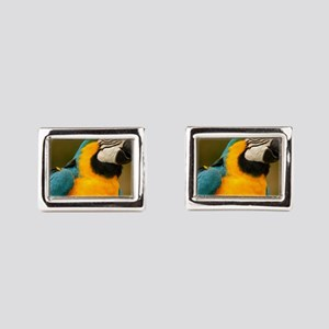 blue and gold macaw Cufflinks