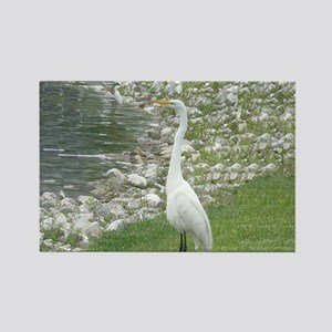 The Egret man allover Rectangle Magnet