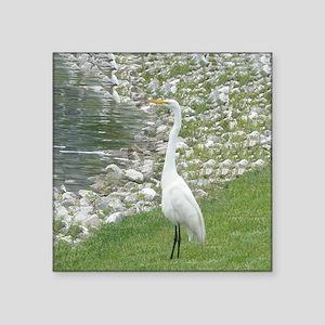 """The Egret man allover Square Sticker 3"""" x 3"""""""