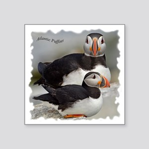 "Puffin Tee Square Sticker 3"" x 3"""
