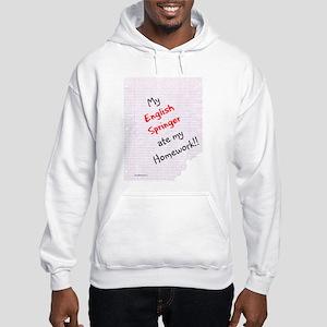 Springer Homework Hooded Sweatshirt