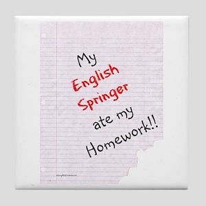 Springer Homework Tile Coaster