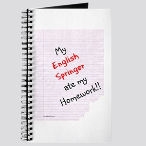 Springer Homework Journal