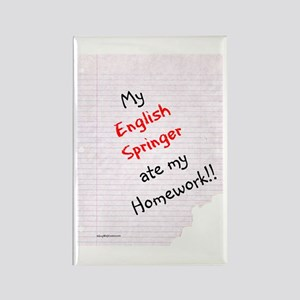 Springer Homework Rectangle Magnet