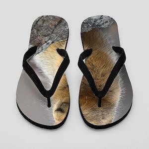 Ground Squirrel Flip Flops