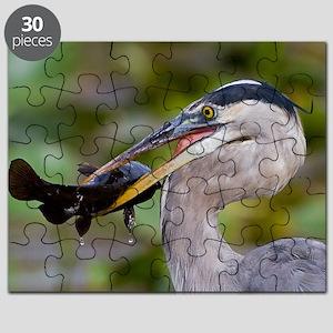 Blue Catfish Puzzle
