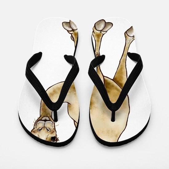Hump Day Camel Flip Flops