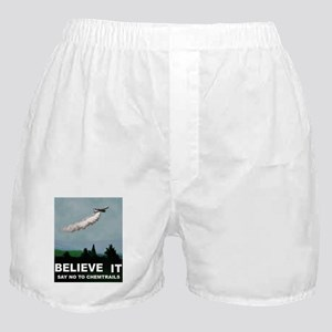 illuminati new world order 911 Boxer Shorts