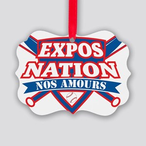 Logo ExposNation Picture Ornament