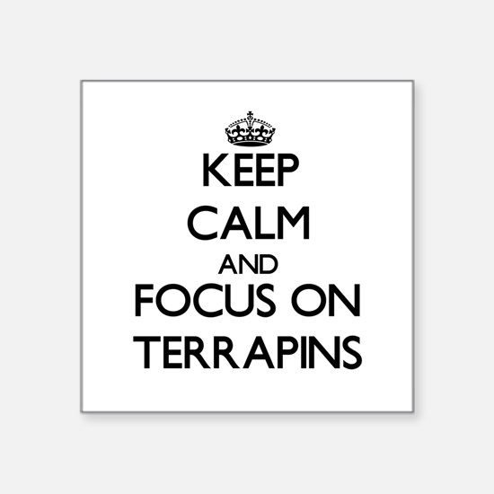 Keep calm and focus on Terrapins Sticker
