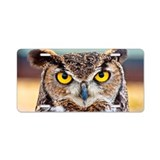 Owl License Plates