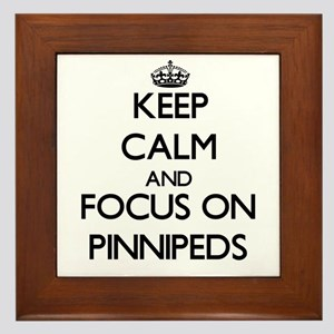 Keep calm and focus on Pinnipeds Framed Tile
