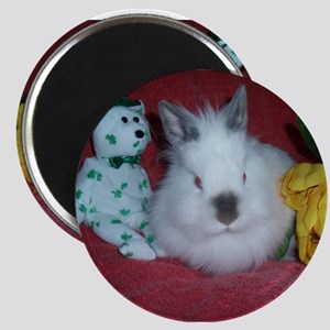 """Lionhead Rabbit 2.25"""" Magnet (10 pack)"""