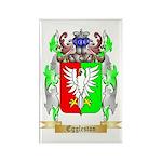 Eggleston Rectangle Magnet (100 pack)