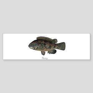 Tautog Bumper Sticker