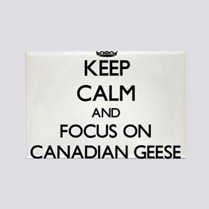 Keep calm and focus on Canadian Geese Magnets