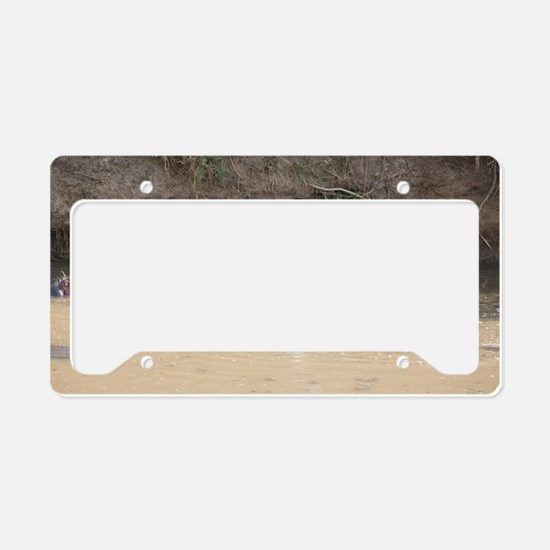 Hippo Mouth License Plate Holder