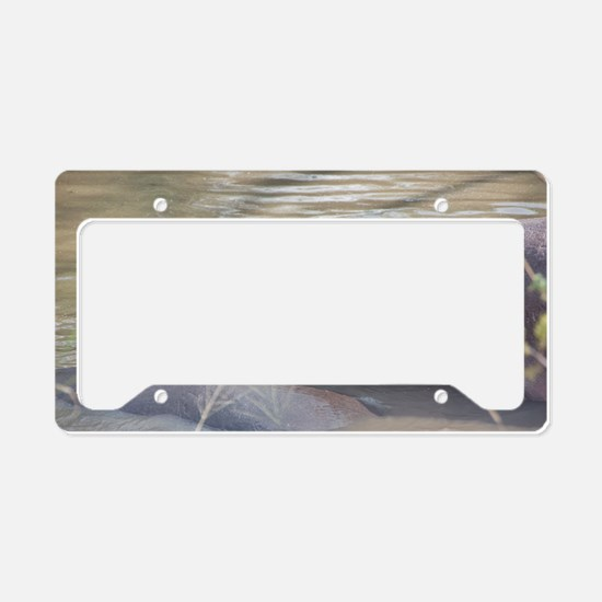 Hippo Sleeping License Plate Holder