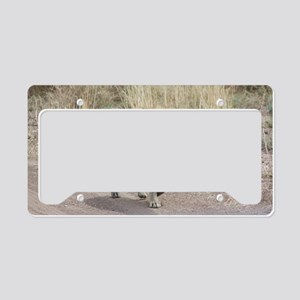 Hyena License Plate Holder