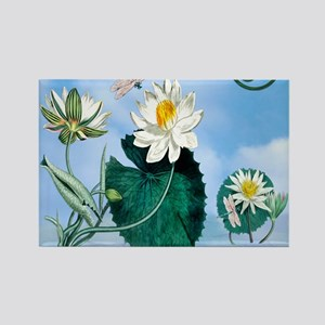 SHOWER CURTAIN OM Lotus Dragonfly Rectangle Magnet