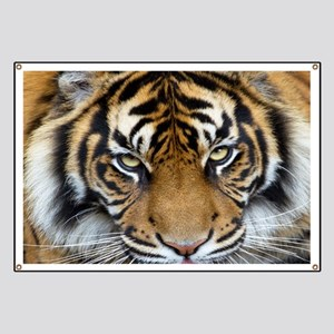 Focus on goal and success Sumatran Tiger Ki Banner