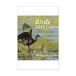 Birds 2015 cover image Mini Poster Print