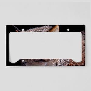 (1) Lynx 9288 License Plate Holder