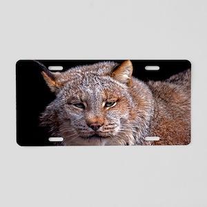 (1) Lynx 9288 Aluminum License Plate