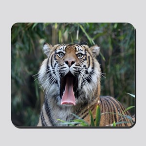 Love hunger Sumatran tiger Mousepad