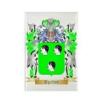 Egalton Rectangle Magnet (10 pack)