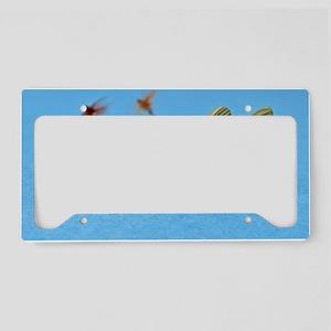 Bass License Plate Holder