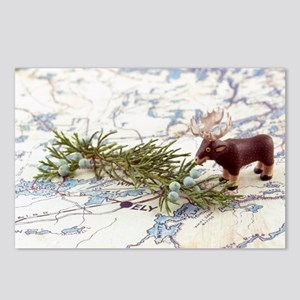 BWCA Moose Postcards (Package of 8)